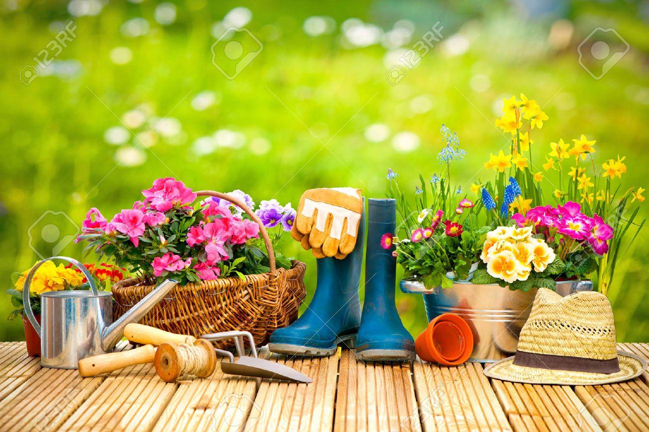 30 de articole de grădinărit pentru sezonul de primăvară 2020