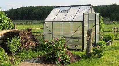 Ce poți cultiva în solar iarna