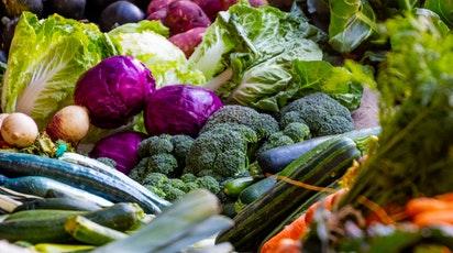 Cei mai comuni dăunători ai legumelor și metode de combatere