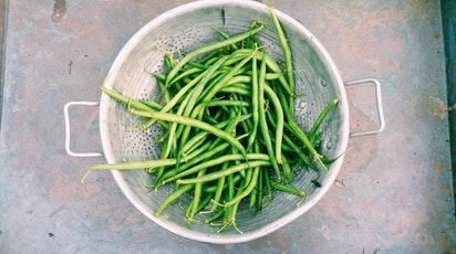 Cum cultivi fasolea păstăi în grădină? Recomandări de semănare și îngrijire