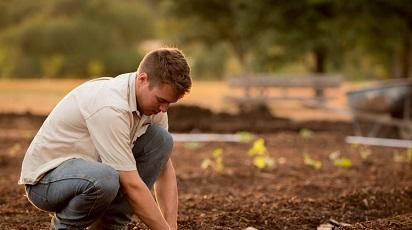 Grădinărește inteligent: amenajarea corectă a straturilor în grădină