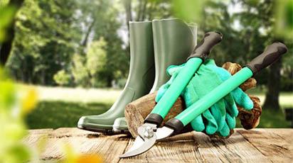 Cele mai utile instrumente de grădinărit pentru perioada de toamnă