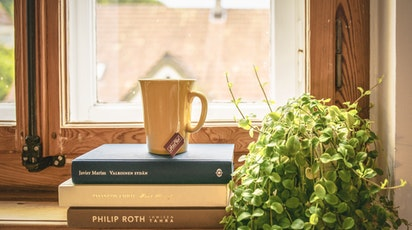 Plante de ceai pentru căni aromate