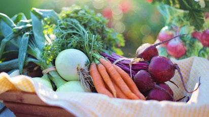 Ce legume și zarzavaturi poți planta primăvara?