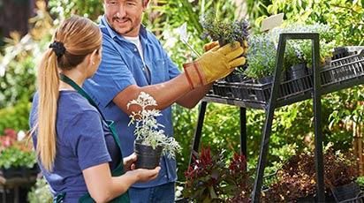 10 Sfaturi pentru grădinarii începători