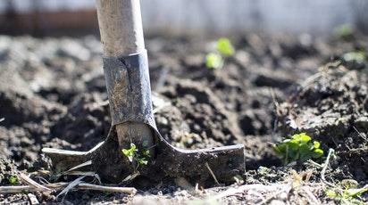 Unelte de grădinărit esențiale pentru orice gospodar