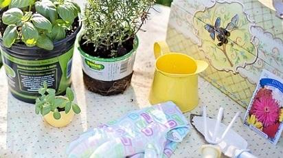 Ustensile de grădinărit. Ce nu trebuie să lipsească din gospodăria ta