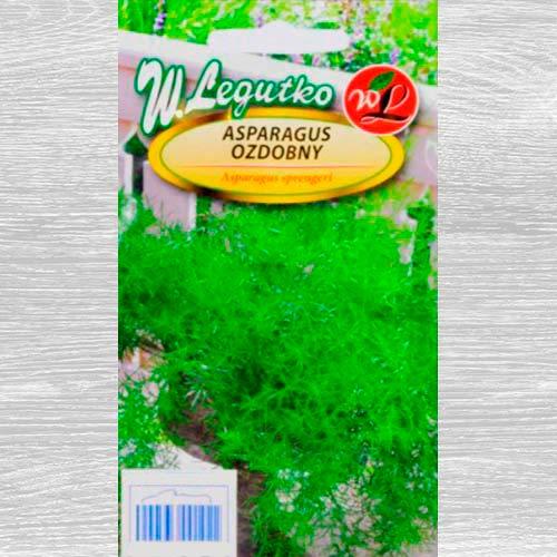 Asparagus imagine 1 articol 69556
