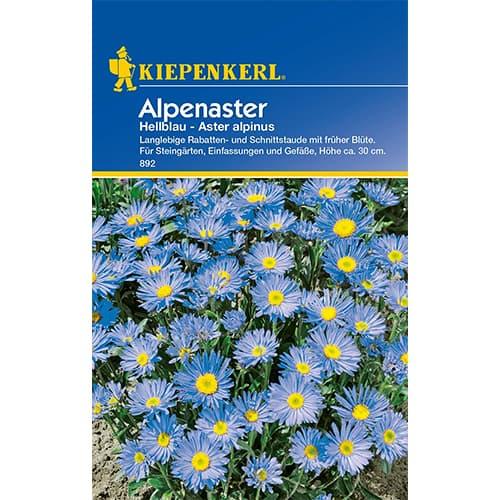 Aster alpin Light Blue imagine 1 articol 77395