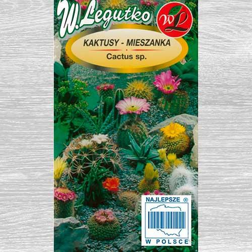 Cactus, mix multicolor imagine 1 articol 69595
