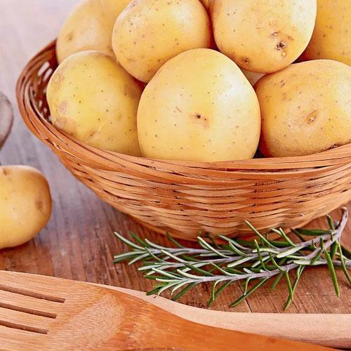 Cartofi de sămânță Ranomi imagine 1 articol 1080