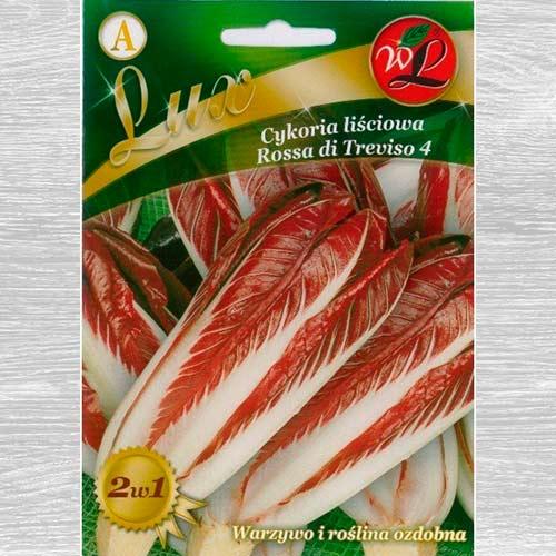 Cicoare de frunze (radicchio) Rossa di Treviso imagine 1 articol 69457