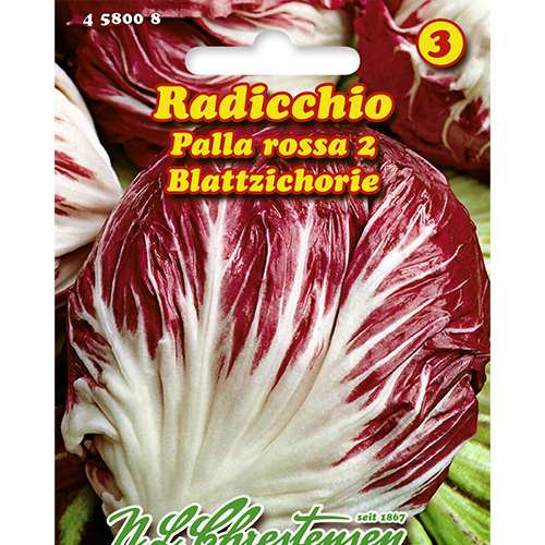 Cicoare roșie (radicchio) Palla Rossa 2 imagine 1 articol 86083