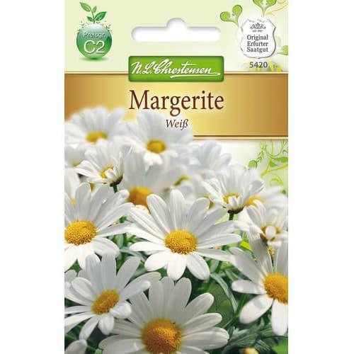 Crizantemă White imagine 1 articol 78972