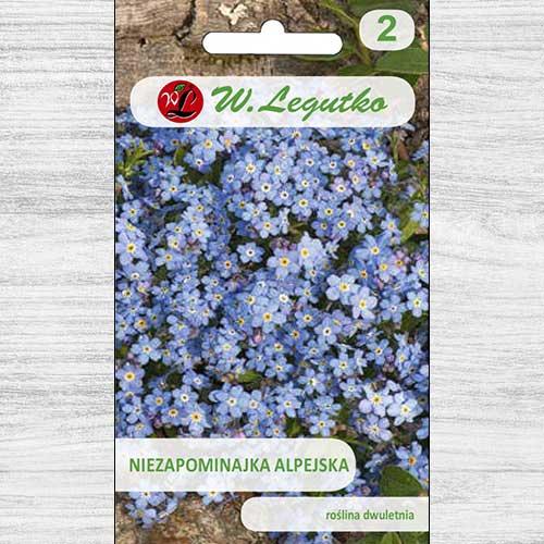 Floare de nu mă uita albastră imagine 1 articol 78614