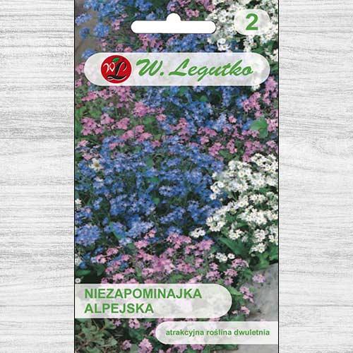 Floare de nu mă uita, mix multicolor imagine 1 articol 78615