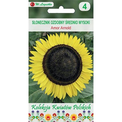 Floarea soarelui decorativă Amor Arnold imagine 1 articol 86731