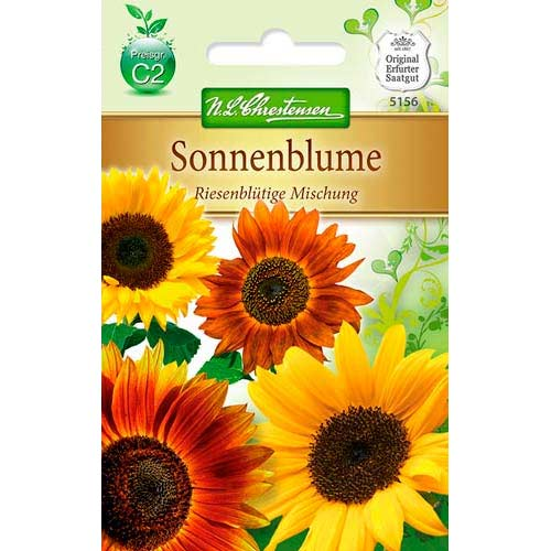 Floarea soarelui decorativă gigant, mix multicolor imagine 1 articol 78915