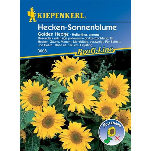 Floarea soarelui decorativă Golden Hedge imagine 1 articol 86322