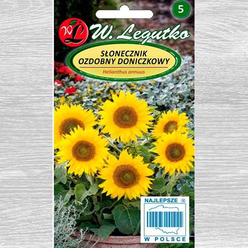 Floarea soarelui decorativă Polino Gold imagine 1 articol 69628