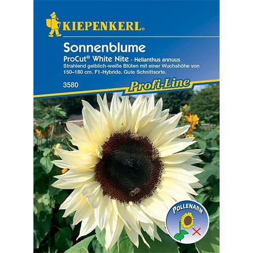 Floarea soarelui decorativă Pro Cut White Nite F1 imagine 1 articol 86327
