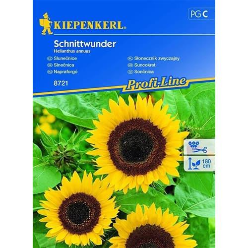 Floarea soarelui decorativă Schnittwunder imagine 1 articol 78916