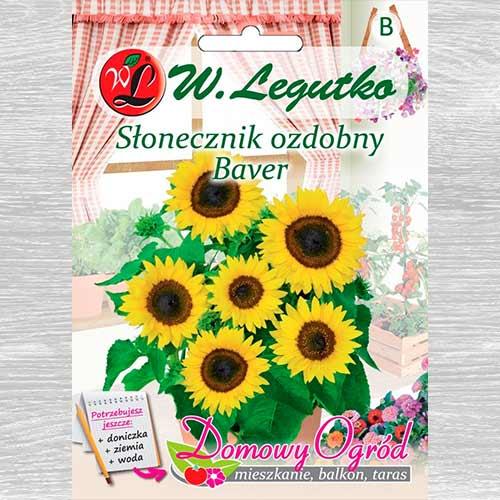 Florea soarelui decorativă Baver imagine 1 articol 69662