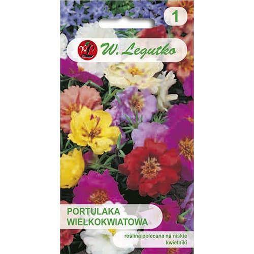 Flori de piatră, mix multicolor imagine 1 articol 78931