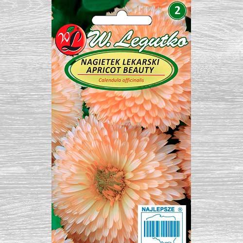 Gălbenele Apricot Beauty imagine 1 articol 69611