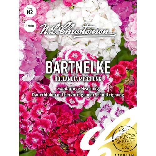 Garoafă turcească Hollandia, mix multicolor imagine 1 articol 86123