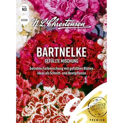 Garoafă turcească perenă, mix multicolor imagine 1 articol 86122