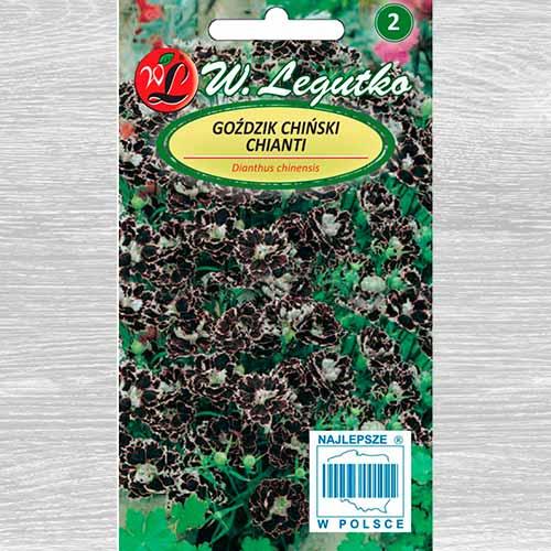 Garoafă chinezească Chianti imagine 1 articol 69592