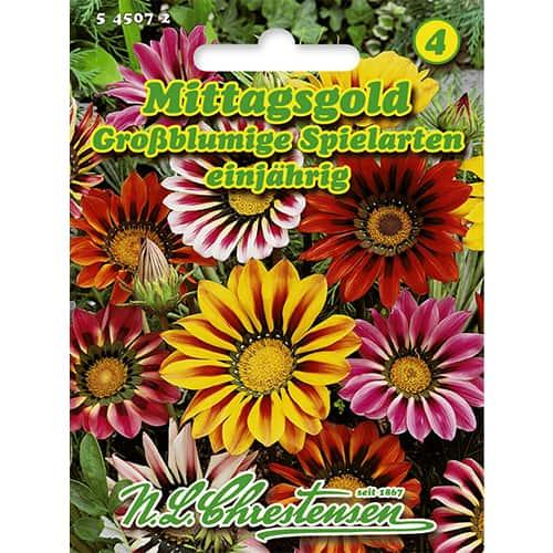 Gazania (Floarea comoară) Gigant, mix multicolor imagine 1 articol 86173