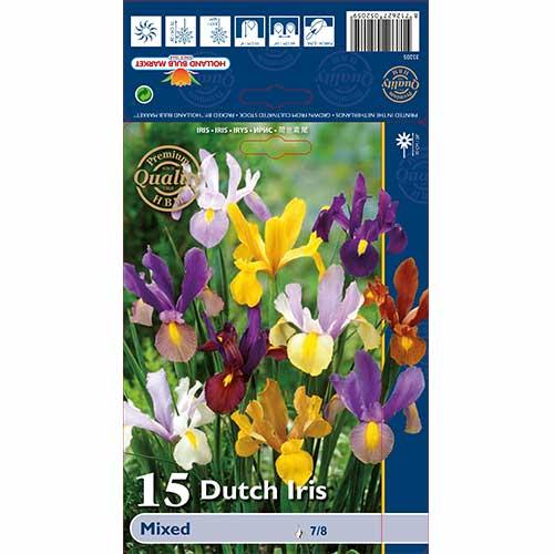 Iris olandez mix multicolor imagine 1 articol 67603