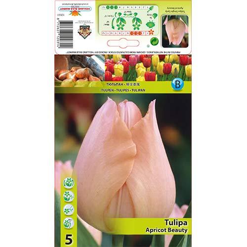 Lalele Apricot Beauty imagine 1 articol 67864