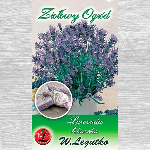 Lavandă medicinală imagine 1 articol 69675