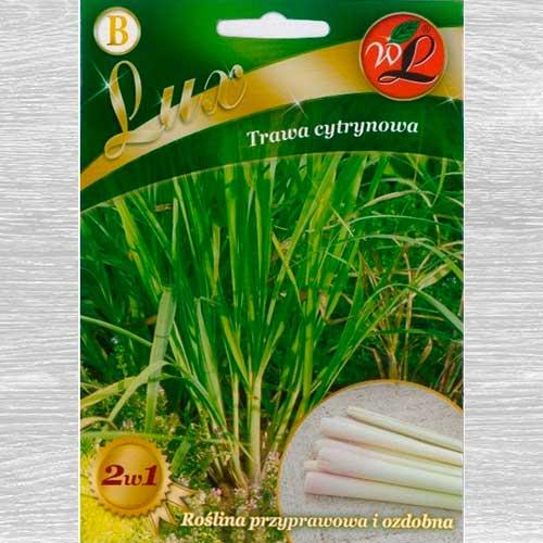 Iarbă de lămâie (Lemongrass) imagine 1 articol 69547