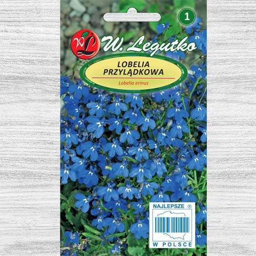 Lobelia curgătoare albastră imagine 1 articol 78573