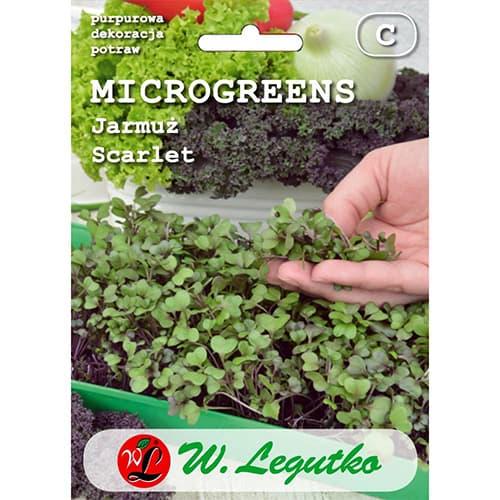 Microplante - Varză kale Scarlet imagine 1 articol 78686