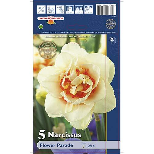 Narcise Flower Parade imagine 1 articol 67667