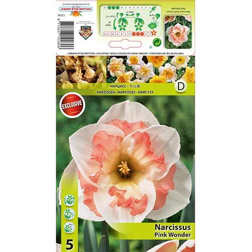Narcise Pink Wonder imagine 1 articol 67434