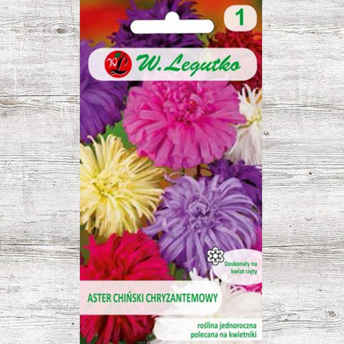 Ochiul boului tip crizantemă, mix multicolor imagine 1 articol 78511