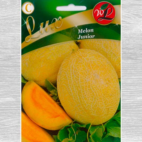 product_detail_img