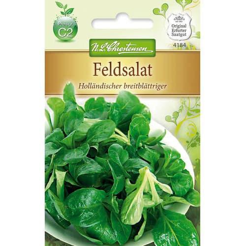 Salată de câmp (Fetică) Hollandischer Breitblattriger imagine 1 articol 78767