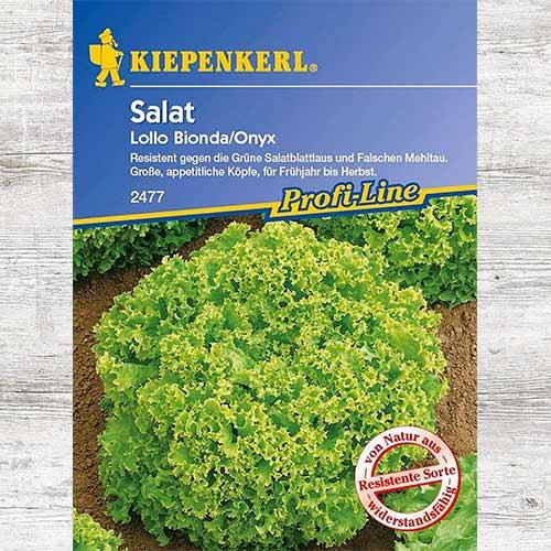 Salată Lollo Bionda imagine 1 articol 86474
