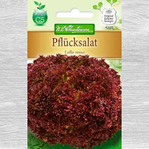 Salată Lollo Rossa imagine 1 articol 78779
