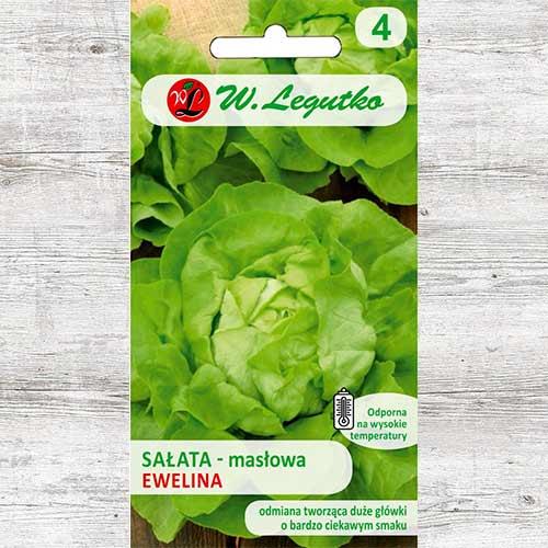 Salată verde Ewelina imagine 1 articol 86900