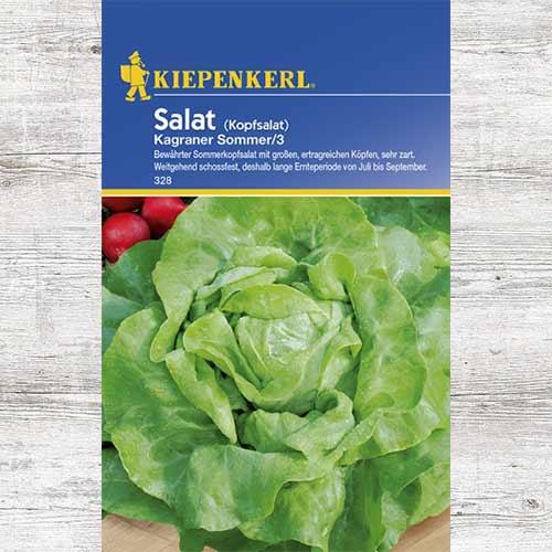 Salată verde Kagraner Summer 3 imagine 1 articol 86462