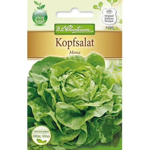 Salată verde Mona imagine 1 articol 78771