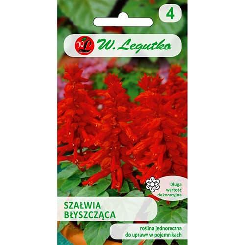 Salvie decorativă roșie imagine 1 articol 78589
